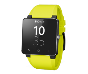 SmartWatch 2 Watchband